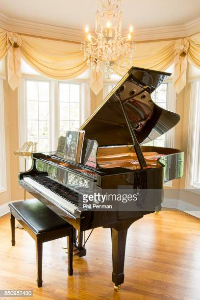 Singer Dennis DeYoung's home is photographed for Closer Weekly Magazine on April 26 2016 in Illinois