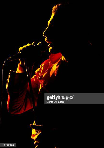 Singer Freddie Mercury performing with British rock group Queen circa 1985