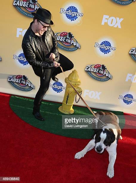 Singer Gavin DeGraw attends Fox's Cause For Paws An AllStar Dog Spectacular at Barker Hangar on November 22 2014 in Santa Monica California