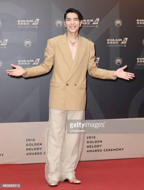 Singer Jam Hsiao poses on red carpet of the 29th Golden Melody Awards ceremony on June 23 2018 in Taipei Taiwan of China