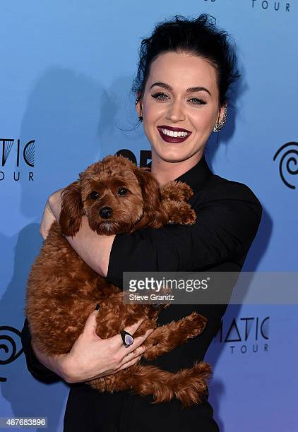 Singer Katy Perry with her dog Butters attend the screening of EPIX's 'Katy Perry The Prismatic World Tour' at The Theatre at Ace Hotel Downtown LA...