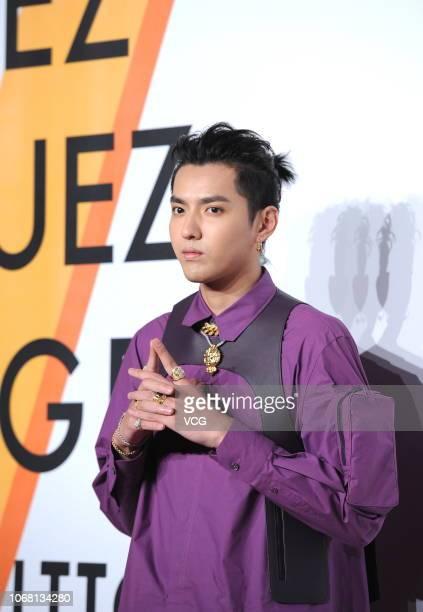 Singer Kris Wu Yifan attends Louis Vuitton Volez Voguez Voyagez Exhibition on November 15 2018 in Shanghai China