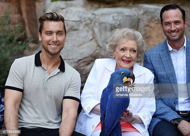 Singer Lance Bass actress Betty White and 99 Cents only Stores Senior Vice President of Store Operations Jason Kidd attend The Greater Los Angeles...