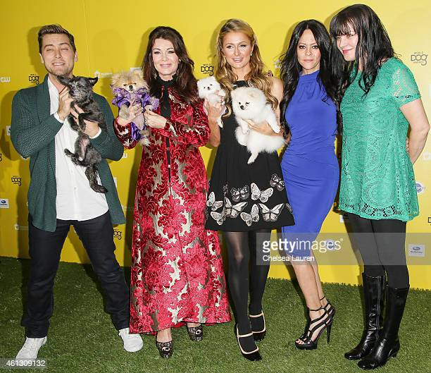 Singer Lance Bass with his dog Lily TV personality Lisa Vanderpump with her dog Giggy socialite Paris Hilton with her dogs Princess Paris Jr and...