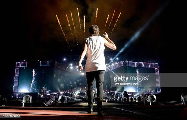 Singer Louis Tomlinson of One Direction performs onstage during the One Direction' Where We Are' Tour at Rose Bowl on September 11 2014 in Pasadena...