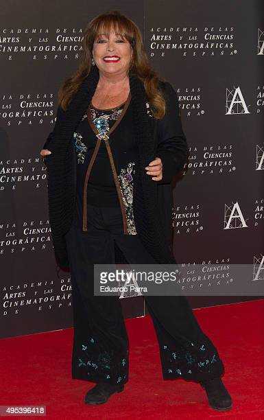 Singer Massiel attends the Golden Medal 2015 ceremony at Academia de Cine on November 2 2015 in Madrid Spain