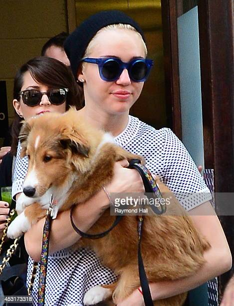 Singer Miley Cyrus is seen carrying her dog Emu in Soho on August 4 2014 in New York City