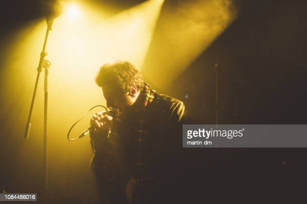 singer performing at nightclub - lead singer stock pictures, royalty-free photos & images