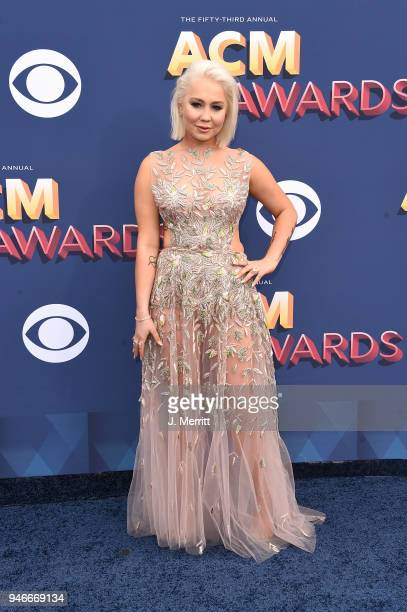 Singer RaeLynn attends the 53rd Academy of Country Music Awards at the MGM Grand Garden Arena on April 15 2018 in Las Vegas Nevada