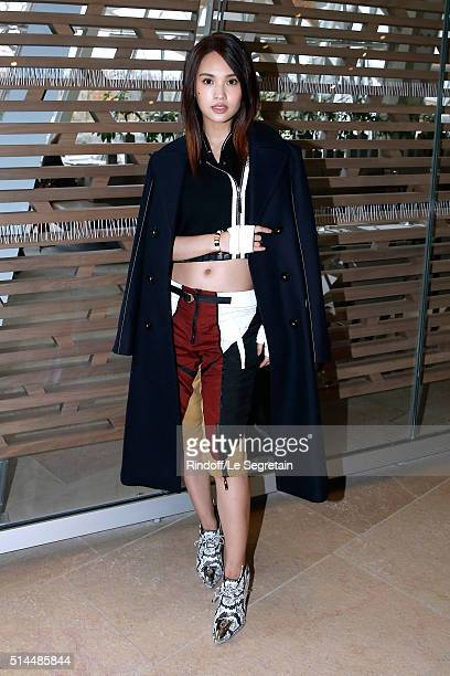 Singer Rainie Yang attends the Louis Vuitton show as part of the Paris Fashion Week Womenswear Fall/Winter 2016/2017 Held at Louis Vuitton Foundation...