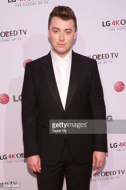 Singer Sam Smith attends the 2014 Art Of The Pixel Gala at Gotham Hall on September 17 2014 in New York City