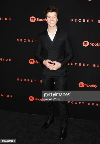 Singer Shawn Mendes attends Spotify's inaugural Secret Genius Awards at Vibiana Cathedral on November 1 2017 in Los Angeles California