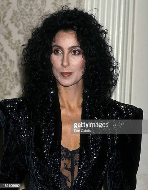 Singer/Actress Cher attends the Academy of Motion Picture Arts and Sciences and The Academy Foundation Present Mercer and the Movies Gala Tribute to...