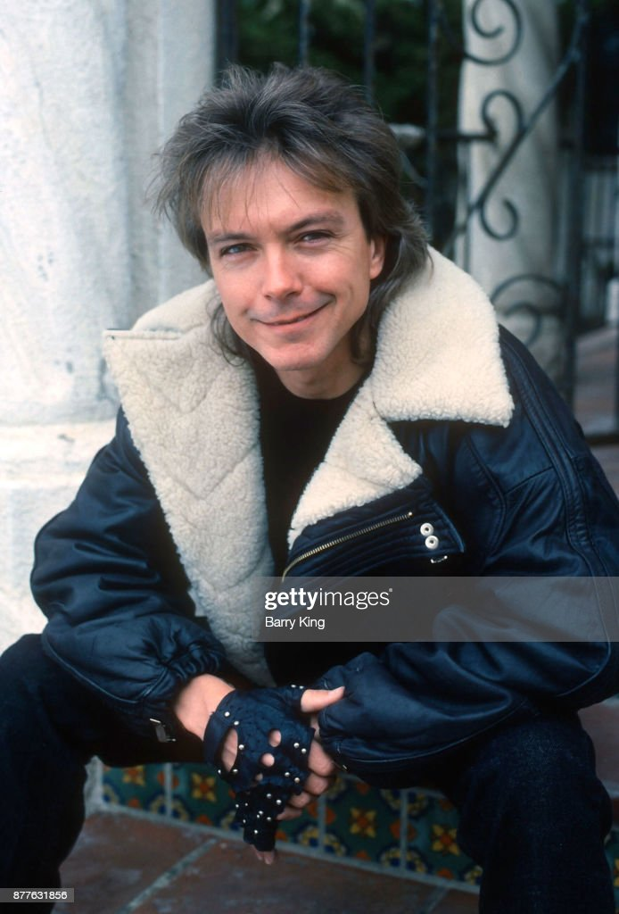 Singer/musician David Cassidy poses during a photo shoot on February 7, 1989 in Los Angeles, California.