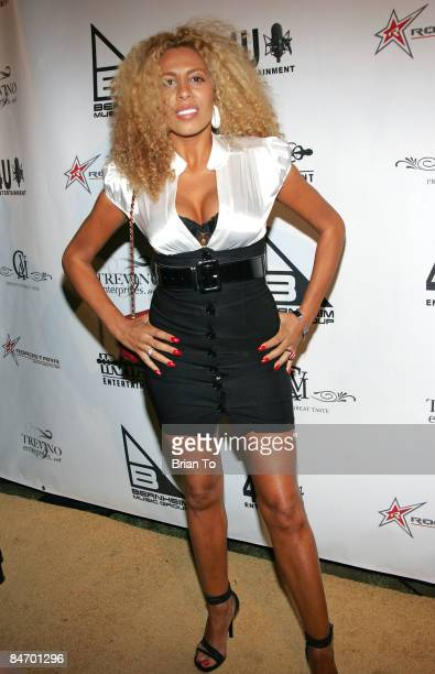 Singer/songwriter Afida Turner arrives at GRAMMY Awards Gold Carpet After Party Hosted by NeYo at Social Hollywood on February 8 2009 in Hollywood...