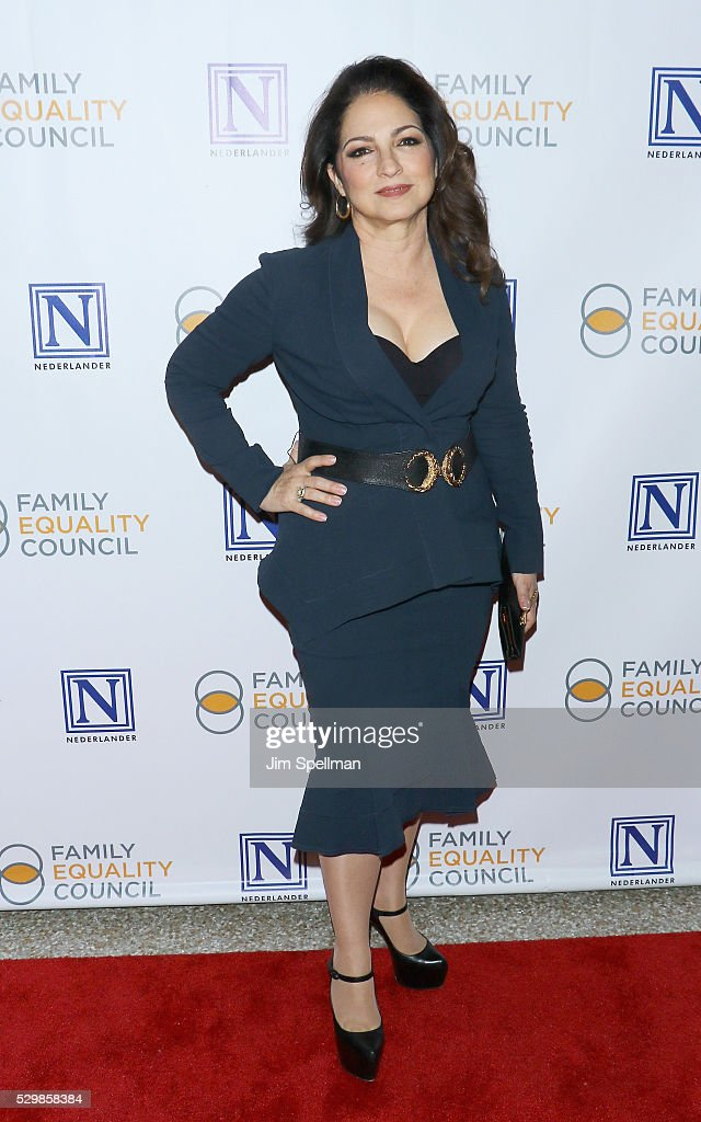 11th Annual Family Equality Council Night At The Pier : News Photo