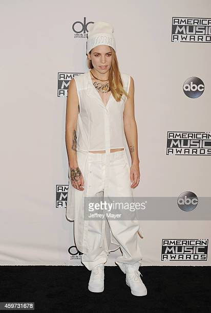 Singersongwriter Skylar Grey poses in the press room at the 2014 American Music Awards at Nokia Theatre LA Live on November 23 2014 in Los Angeles...