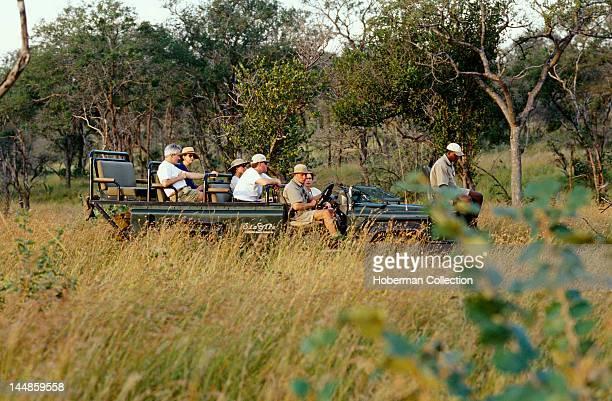 Singita Safari Mpumalanga