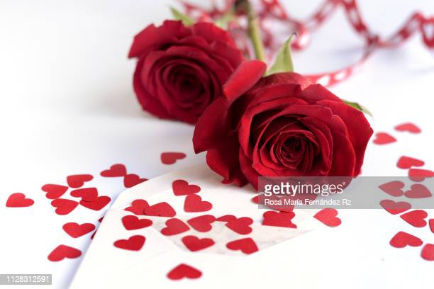 single blank enveloped, paper heart shape and two frangant deep red rose lying down on  white background. selective focus and copy space - february background stock pictures, royalty-free photos & images