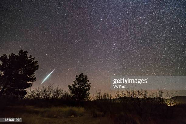 Single bright meteor from the Geminid meteor shower of December 2017, dropping toward the horizon in Ursa Major Gemini itself and the radiant of the...