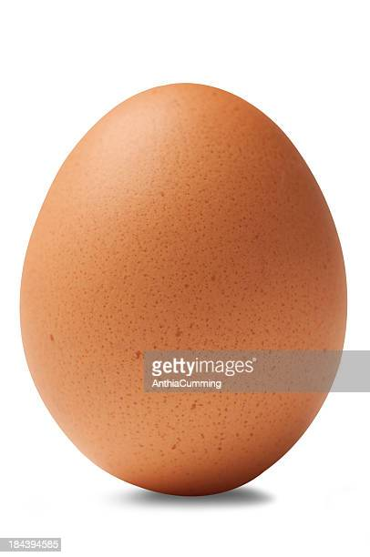 single brown chicken egg isolated on white background - egg stock pictures, royalty-free photos & images