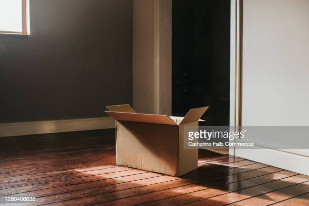 single cardboard box in a sunny room - endopack stock pictures, royalty-free photos & images