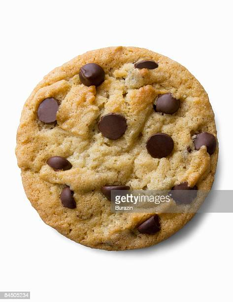 Single chocolate chip cookie
