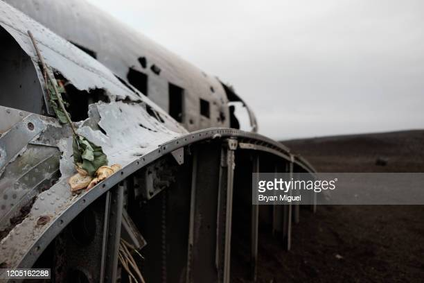 single flower at a plane crash - airplane crash stock pictures, royalty-free photos & images