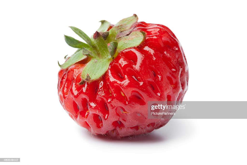 Single fresh ripe strasberry : Stock Photo