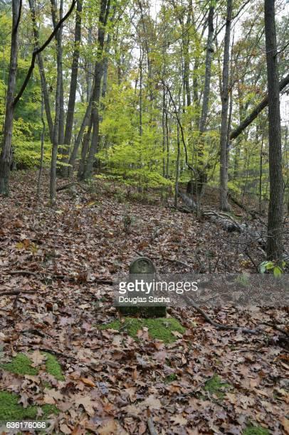 single grave marker in a dense forest - grab stock-fotos und bilder