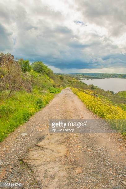 single lane track leading down to gabriel & galan reservoir - bumpy stock photos and pictures
