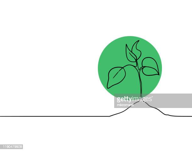 single line drawing of a plant - circle stock pictures, royalty-free photos & images