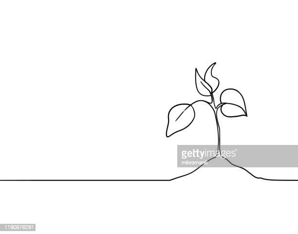 single line drawing of a plant - people icons stock pictures, royalty-free photos & images