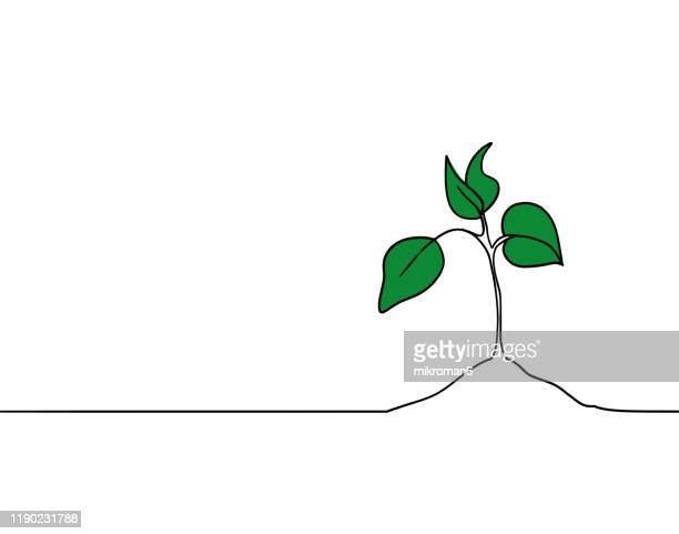 single line drawing of a small plant - harvest icon stock pictures, royalty-free photos & images