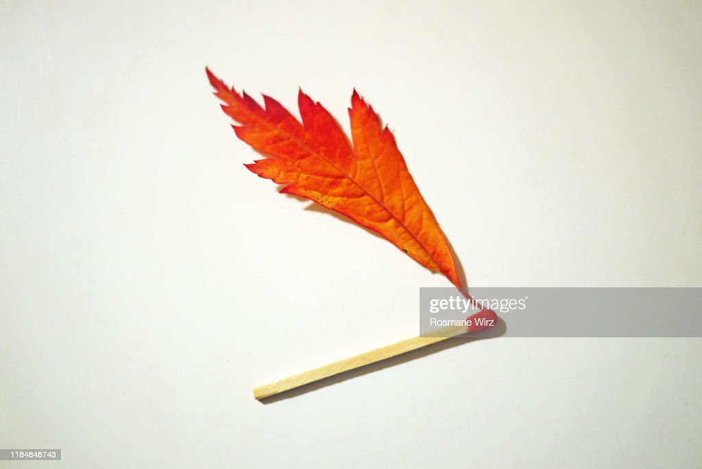 Single match with red flame on white surface : Stock Photo
