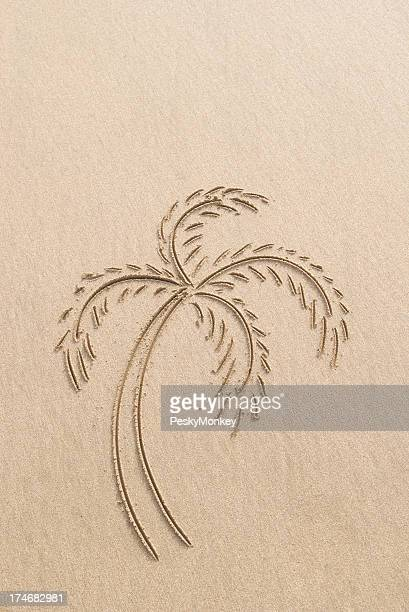 Single Palm Tree Drawing in Sand