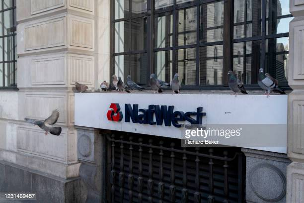 Single pigeons takes flight from a ledge outside the 'Bank' branch of Nawest Bank PLC in the City of London, on 1st March 2021, in London, England.