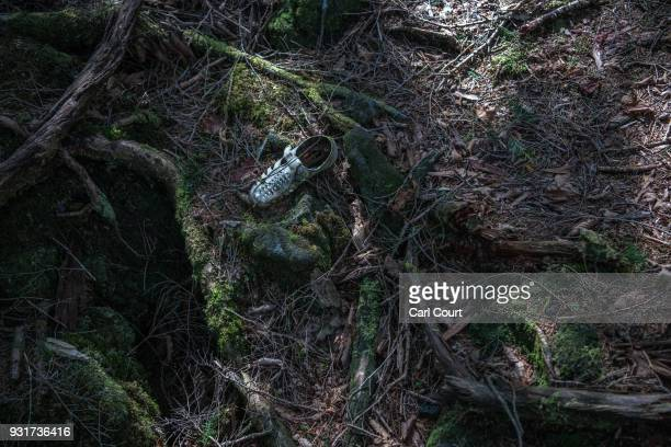 A single shoe remains at the scene of an apparent suicide in Aokigahara forest on March 14 2018 in Fujikawaguchiko Japan Aokigahara forest lies on...