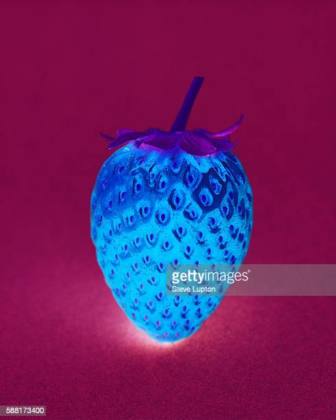 Single Strawberry Abstract