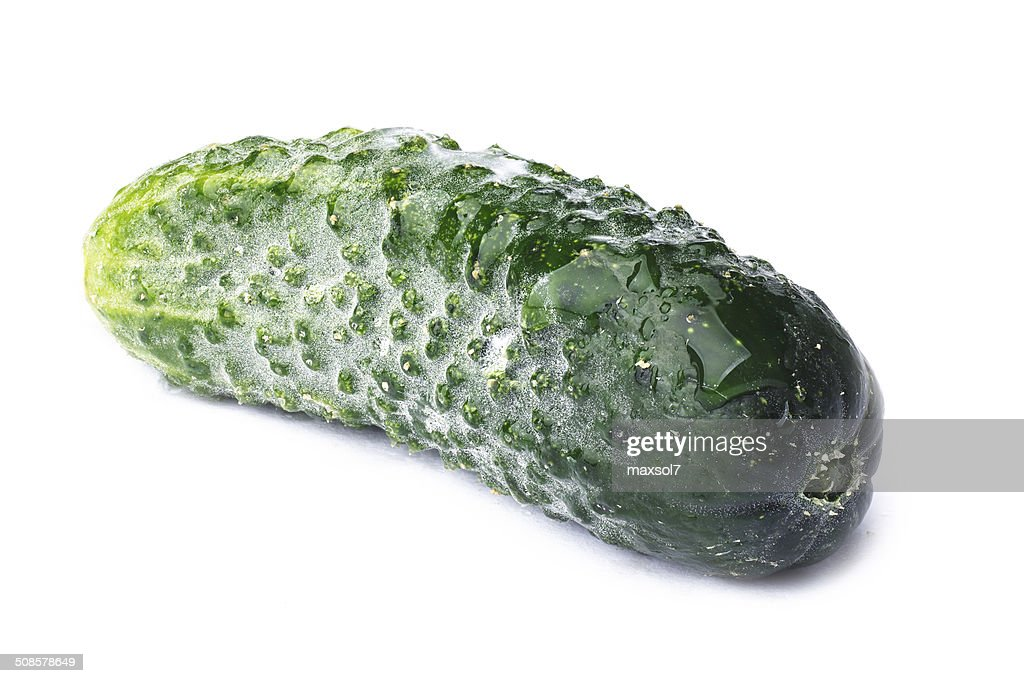 Single tiny cucumber : Stock Photo