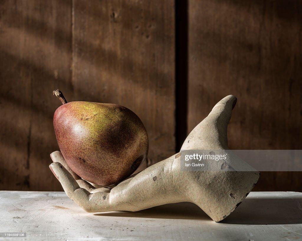 Single Unbitten Pear in Mannequin Hand : Stock Photo