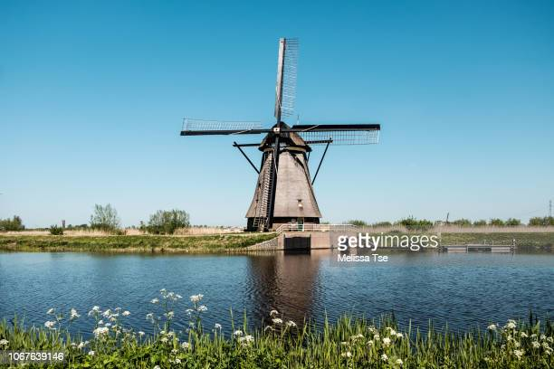 single windmill at kinderdijk - dutch culture stock pictures, royalty-free photos & images