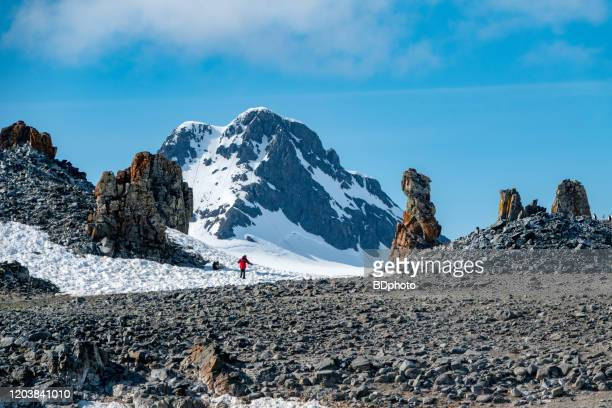 single woman exploring the antarctic peninsula - antarctica stock pictures, royalty-free photos & images