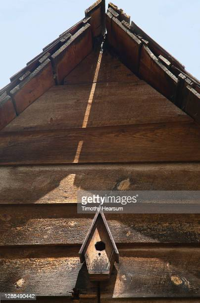 a single wooden birdhouse mounted on a matching wooden wall; eave, roof and sky above - timothy hearsum stock-fotos und bilder