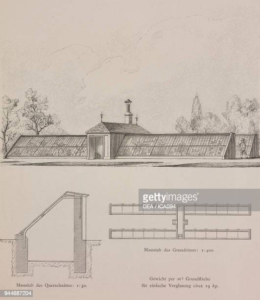 Singleglazed greenhouses built for Adalmar Breden in Inzersdorf am Wienerberge Austria engraving Skizzen und Typen plate 174 designs by Rudolph...