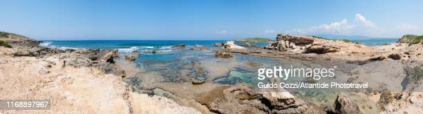 sinis peninsula, su pallosu beach - image stock pictures, royalty-free photos & images