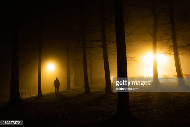 sinister silhouette man lurking in forest at night - woodland stock pictures, royalty-free photos & images