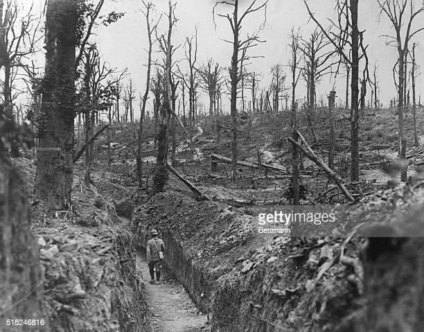 A sinister spectacle is pictured here on the battlefield in the Somme where Germany's flag began to droop