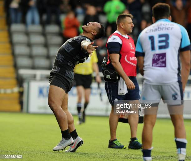 Sinoti Sinoti of Newcastle Falcons celebrates after Callum Chick scores a last minute, match winning try during the Champions Cup match between...