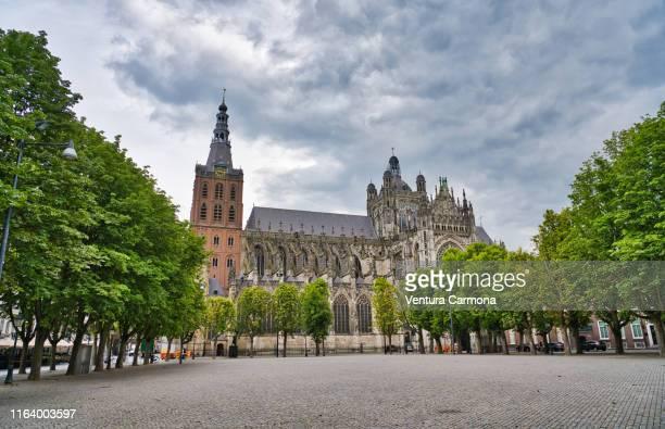sint-janskathedraal of 's-hertogenbosch - 's hertogenbosch stockfoto's en -beelden
